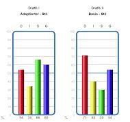 INSIGHTS MDI®-Reports-Typensystem