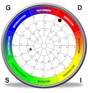 INSIGHTS MDI®-Typensystem-DISG