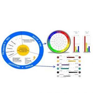 Insights Test Erfahrungen